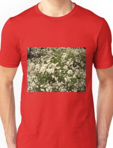 Large field overgrown with small white daisy flower Unisex T-Shirt