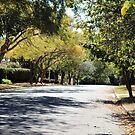 Walkin Down The Avenue by -aimslo-
