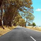 Outback Highway by -aimslo-