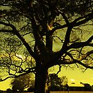 Tree of Noble Truths by -aimslo-