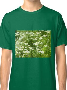 Defocused and blur bushes camomile flowers Classic T-Shirt