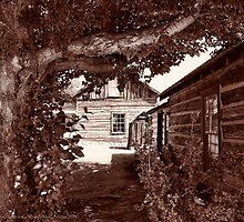 Nevada City Sepia 2 (Montana, USA) by rocamiadesign