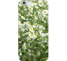 Large field overgrown with small white daisy flowers closeup iPhone Case/Skin