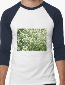 Large field overgrown with small white daisy flowers closeup Men's Baseball ¾ T-Shirt