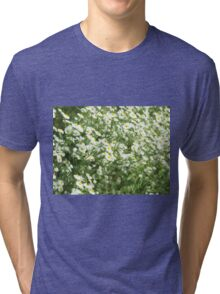 Large field overgrown with small white daisy flowers closeup Tri-blend T-Shirt