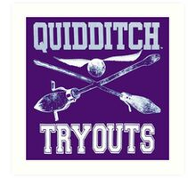 Harry Potter Quidditch Tryouts Art Print