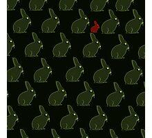 Best friends - Rabbits Photographic Print
