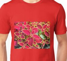 Red Coleus plant closeup Unisex T-Shirt