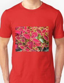 Red Coleus plant closeup T-Shirt