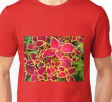 Red Coleus plants closeup Unisex T-Shirt