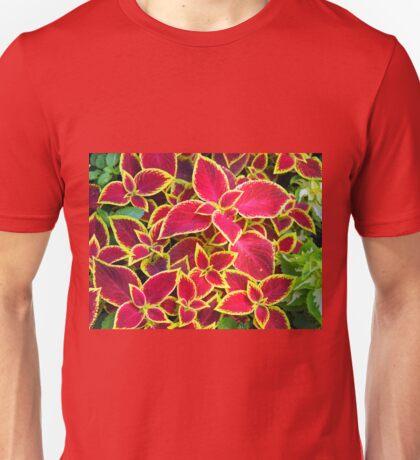 Red Coleus plants closeup Unisex T-Shirt