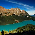 Peyto Lake by Michael Collier