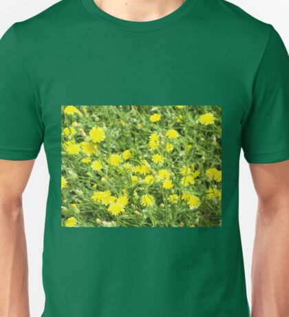 Thickets of small yellow flowers Picris Rigida at forest lawn Unisex T-Shirt