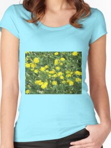 Thickets of small yellow flowers Picris Rigida Women's Fitted Scoop T-Shirt