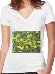 Thickets of small yellow flowers Picris Rigida Women's Fitted V-Neck T-Shirt
