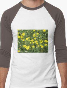 Thickets of small yellow flowers Picris Rigida Men's Baseball ¾ T-Shirt
