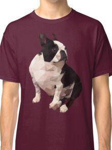 Polygonal Cork Classic T-Shirt
