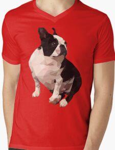 Polygonal Cork Mens V-Neck T-Shirt