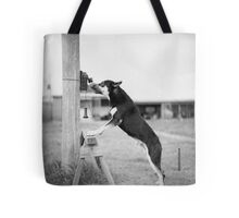 Police Dog, Tess Tote Bag