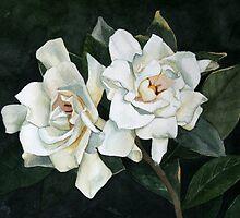 Gardenia Duo 2 by Jan Lawnikanis