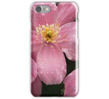 Pink Clematis after the rain iPhone Case/Skin