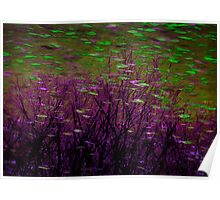 Green and Purple Fish in Surreal Seascape Poster