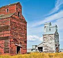 The tallest structures in Madoc, Montana, USA by Bryan D. Spellman