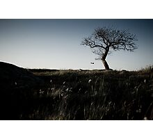 Abandoned. Lonely. Isolated #1 Photographic Print