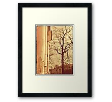 forgotten palace  Framed Print