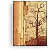 forgotten palace  Canvas Print