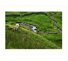 Yorkshire Dales. Art Print