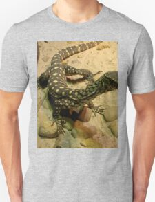 Tiny Monitor Lizard