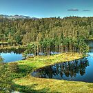 Tarn Hows in September by VoluntaryRanger