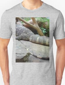 Funky Monitor Lizard
