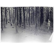 parallel forest 1 Poster
