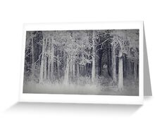 parallel forest 2 Greeting Card