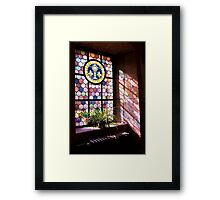 Beautiful Window 4 Framed Print