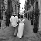 Bride and Groom Taking a Stroll! by Pamela Jayne Smith