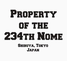 234th Nome Baby Tee