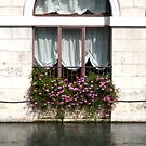 A Window Reflected on The River by Michele Filoscia