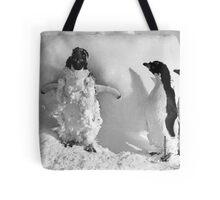 Ice cased Adelie penguins after a blizzard at Cape Denison Tote Bag