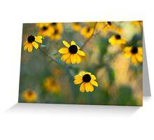 Yellow Softness Greeting Card