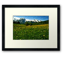 May in Austria Framed Print