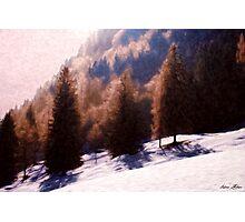 Winter Morning Photographic Print