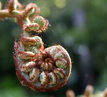 Catepillar or Plant?.. Prostration. by cishvilli