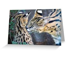 Serval Mom and Kitten Greeting Card