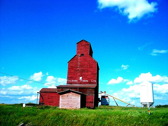 A Dying Breed, Saskatchewan Canada by Laura-Lise Wong