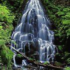 Fairy Falls by Richard Ferguson