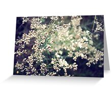 The never changing beauty of wild flowers Greeting Card