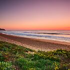 Narrabeen Beach, Sydney Australia. by Melissa Fiene